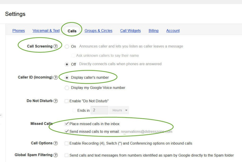 Set Up Google Voice For Your Massage Business: Calls Tab