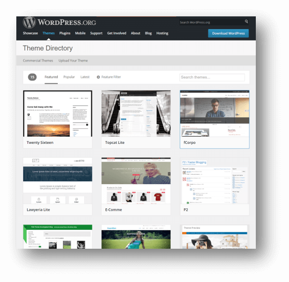 Best Massage Business Tools: WordPress is Flexible and Customizable.